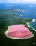 danau pink pic2