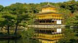 5 Tempat Wisata Yang Harus Kalian Kunjungi di Kyoto pic1