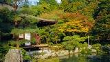 5 Tempat Wisata Yang Harus Kalian Kunjungi di Kyoto pic2