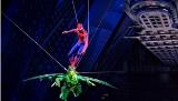 rock musical fenomenal spiderman turn off the dark