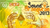 Sound Of Orangutan 2013