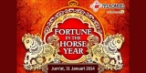 fortune in the horse year