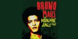Konser Bruno Mars The Moonshine Jungle Tour In Jakarta