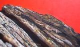 Pameran Lukisan pic