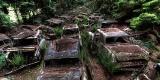 Beginilah Kalau Terjebak Macet Selama 70 Tahun di Hutan Belgia