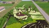 Inilah Berbagai Seni Sawah Jepang Yang Menakjubkan 2