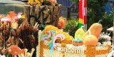 Tomohon International Flower Festival 2014