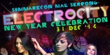 Electrocity New Year Celebration