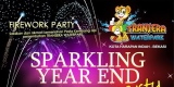 Firework Party - Sparkling Year End Party