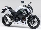 Kawasaki Hadirkan Varian Warna Terbaru Kawasaki Z250 pic2