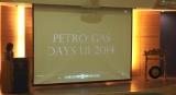 Seminar PetroGas Days UI 2014 pic