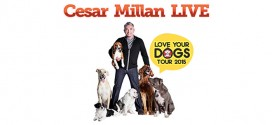 Electronic City Entertainment Gelar Pertunjukkan Cesar Millan