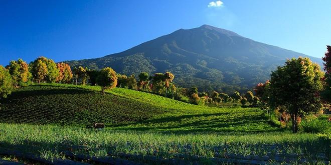 Kerinci Mountain